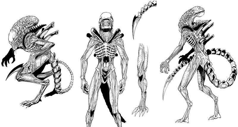 Bocetos de Javier Garcia-Miranda, artista de Aliens/Vampirella