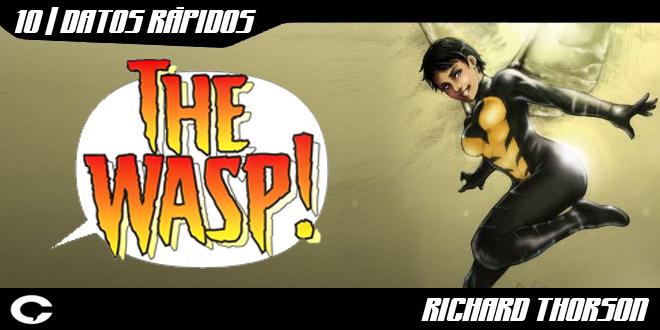 Top-Wasp