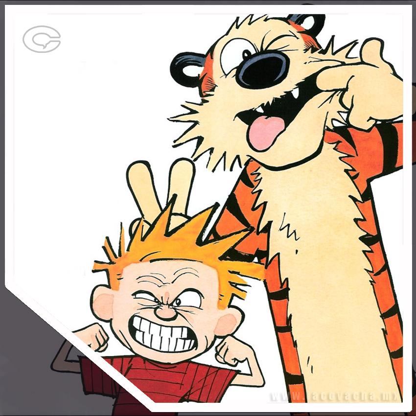 Resultado de imagen de Calvin y Hobbes